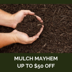 Mulch Mayhem